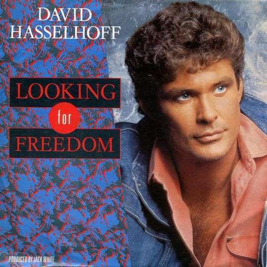 Coverafbeelding David Hasselhoff - Looking For Freedom