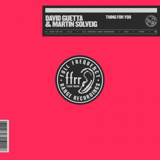 Coverafbeelding Thing For You - David Guetta & Martin Solveig