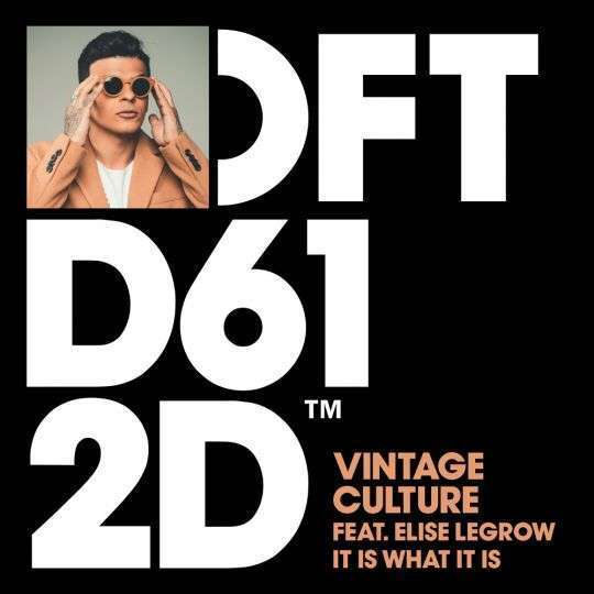 Coverafbeelding Vintage Culture feat. Elise Legrow - It Is What It Is