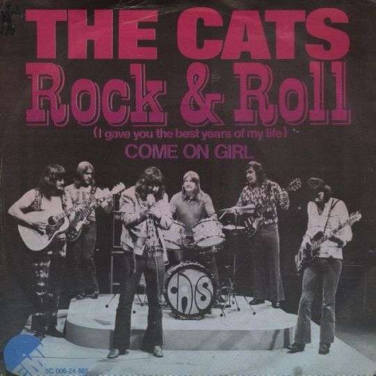 Coverafbeelding Rock & Roll (I Gave You The Best Years Of My Life) - The Cats