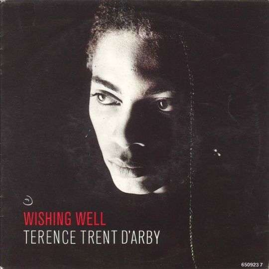 Coverafbeelding Wishing Well - Terence Trent D'arby