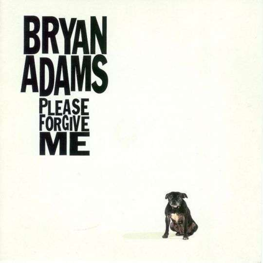 Coverafbeelding Please Forgive Me - Bryan Adams