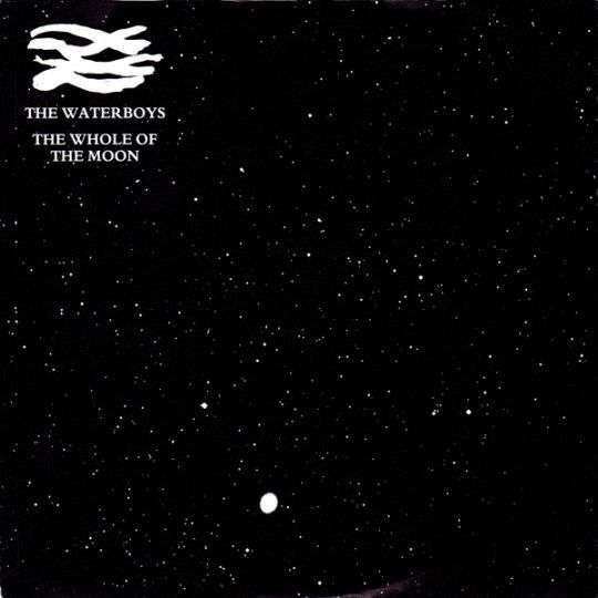 Coverafbeelding The Waterboys - The Whole Of The Moon