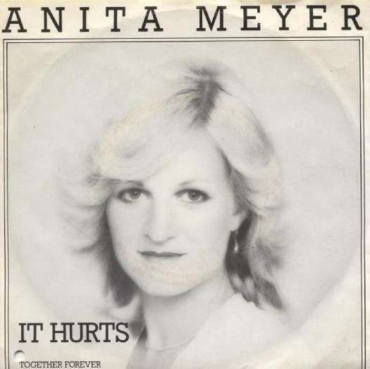 Coverafbeelding It Hurts - Anita Meyer