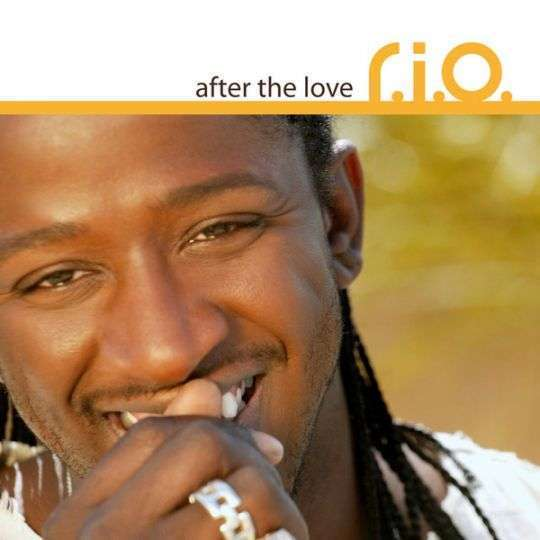 Coverafbeelding After The Love - R.i.o.