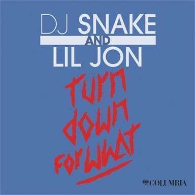 Coverafbeelding Turn Down For What - Dj Snake And Lil Jon