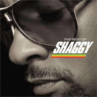 Coverafbeelding Soon Be Done - Shaggy