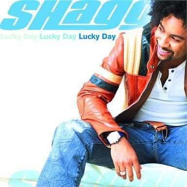Coverafbeelding Strength Of A Woman - Shaggy